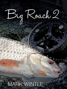 Picture of Big Roach 2