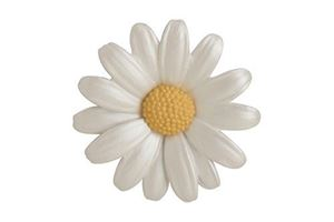 Picture of Daisy Large Brooch 4.5cm diameter
