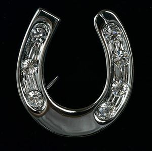 Picture of Horseshoe Brooch
